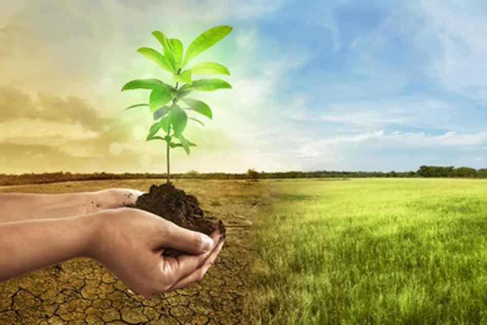 Ecologie - climat
